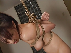 Japanese Domination Bdsm Spanking