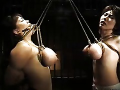 Japanese Boobs Bondage Train